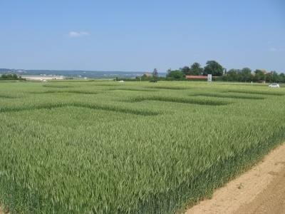 agroecologie infolettre