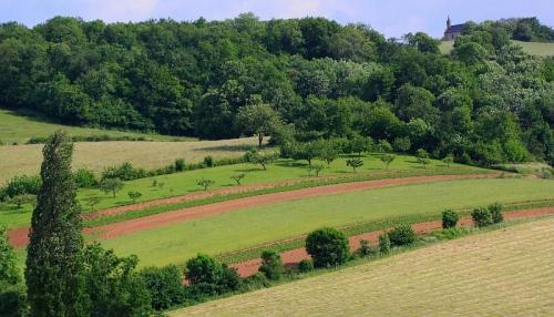 Accompagner la transition agroécologique