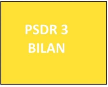 PSDR3 bilan